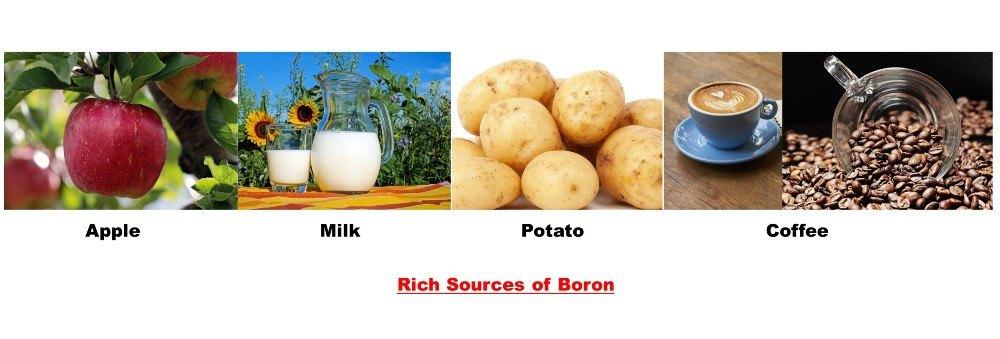 Boron-Testogen Ingredient