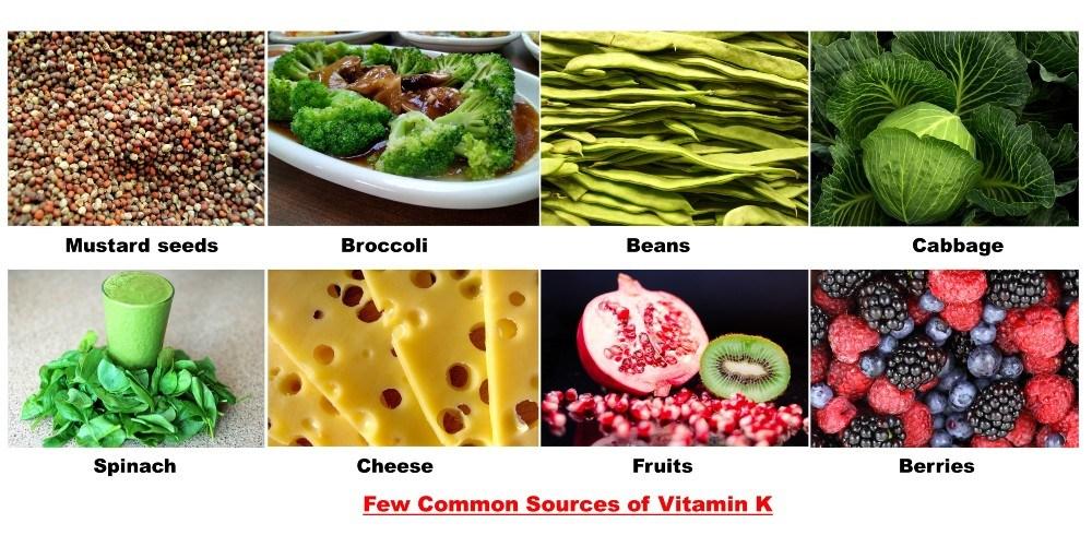 Vitamin K1-Testogen Ingredients